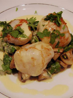 Coquille St Jacques Recipe