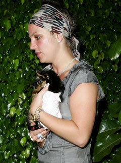 Britney Spears with her new puppy