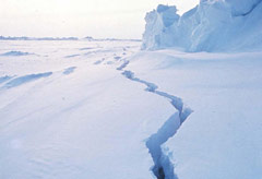 Ice melting - World News - Marie Claire