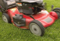 Woman killed in lawnmower accident in Australia - World News - Marie Claire