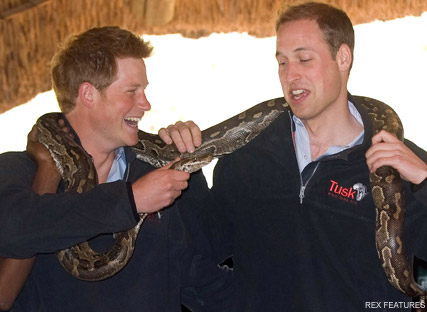 Prince William and Prince Harry - Prince William and Harry in fits holding an 8ft python  - Prince Harry - Prince William - Kate Middleton - Chelsy Davy - World Cup - South Africa - Celebrity News - Marie Claire