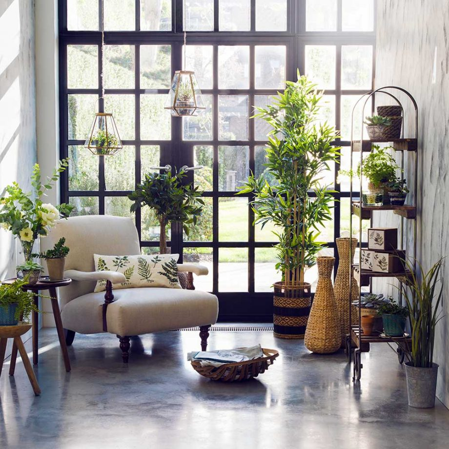 Style Your Home With Beautiful Botanics