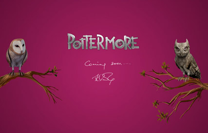 Pottermore - J.K. Rowling launches new Harry Potter website - Pottermore - Harry Potter website - Harry Potter - Marie Claire - Marie Claire UK