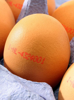 10 Best: Food to beat the blues: Eggs