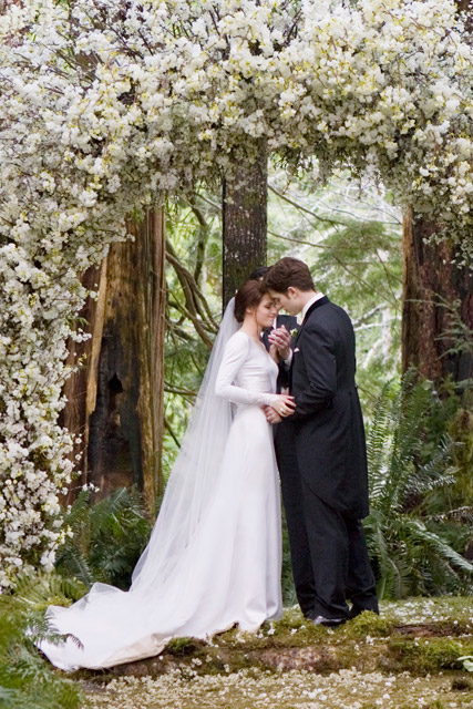 Bella Swan\'s Twilight Wedding Dress Is Up For Auction