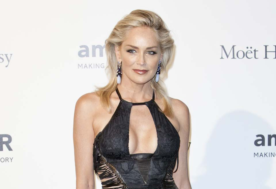 Celebrity Plastic Surgery Sharon Stone
