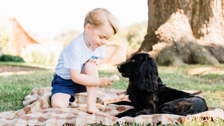 Prince George 3rd birthday photos