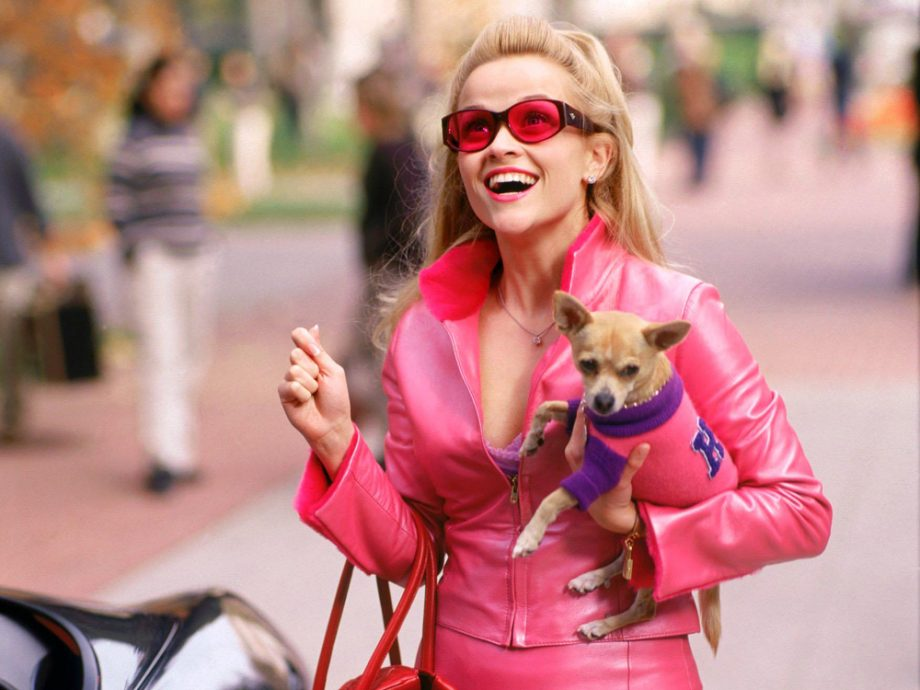 Reese Witherspoon as Elle Woods wearing a pink leather suit and her dog
