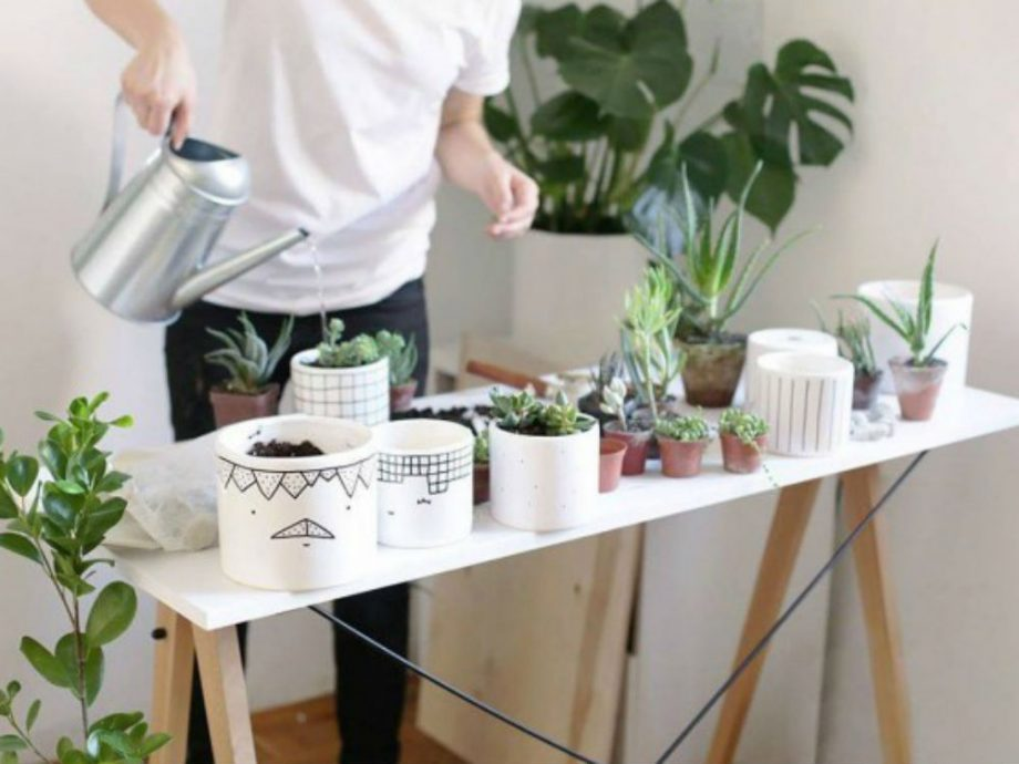 Because Indoor Plants Are Having A Major Moment