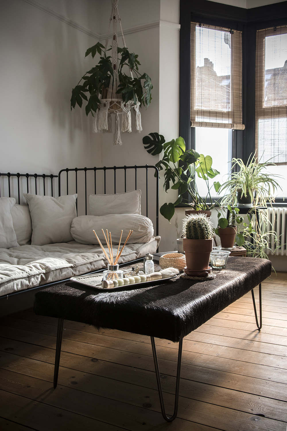 stylist design house plant seeds. Creating the perfect indoor garden space is all about how you show off your  plants in best light That why I love this hanging which brings a splash Indoor create own