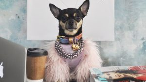 Dolly Pawton Marie Claire Columnist