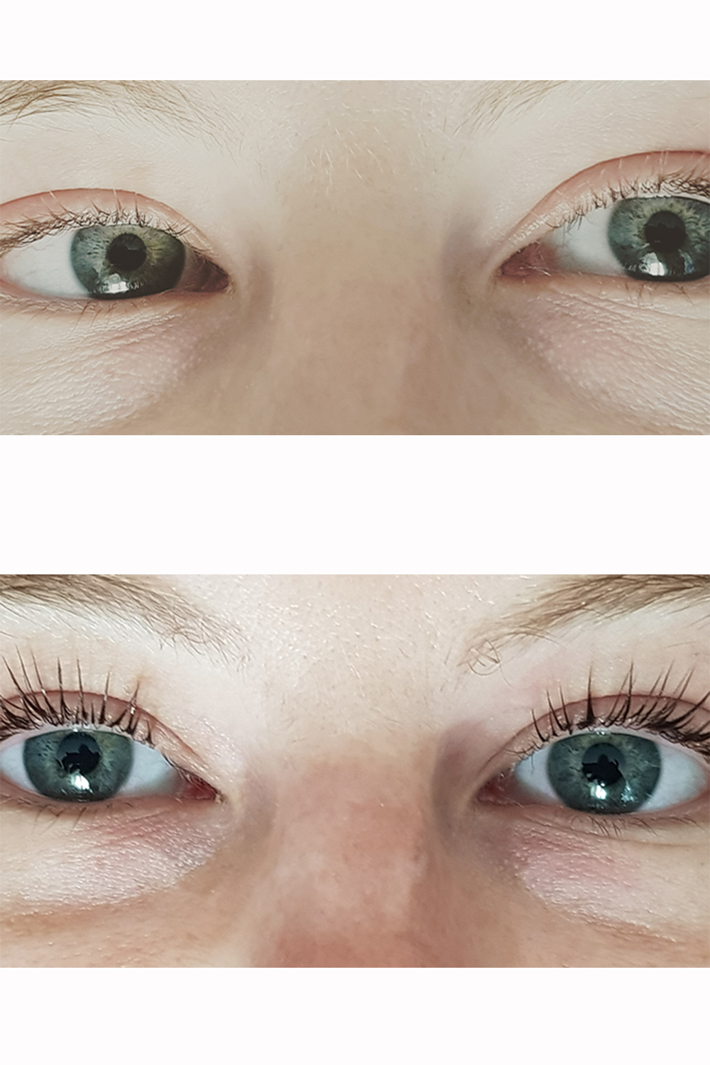 4873d693652 LVL Lashes? What Are They? Everything You Wanted To Know