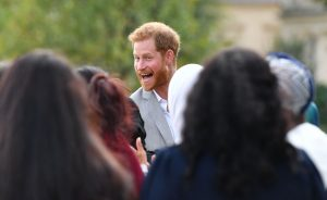 prince harry samosas
