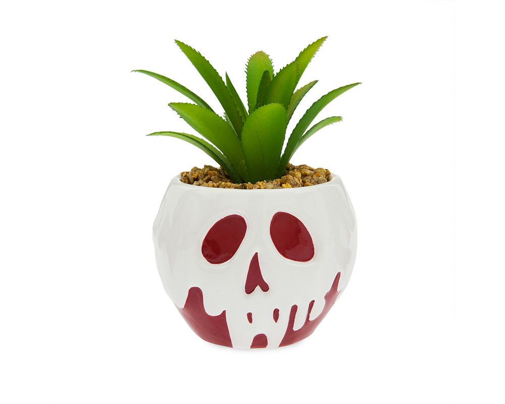There\'s Disney Plant Pots Now If Your Cactus Is As Obsessed As You Are