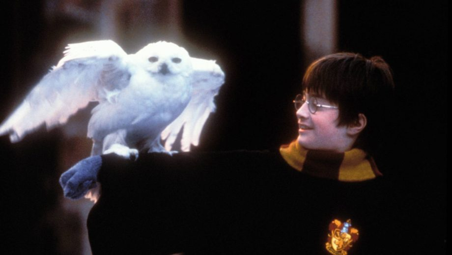 There is a Pandora x Harry Potter collection coming and we need all of it