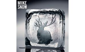 miike snowsleeve110809