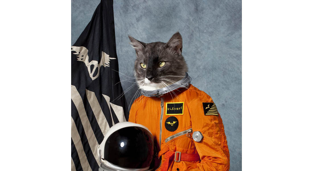 Klaxons Reveal Identity Of Mystery Space Cat On Surfing