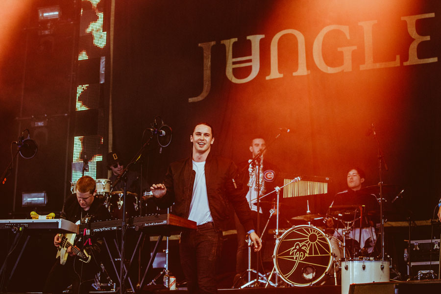 Image result for jungle band live