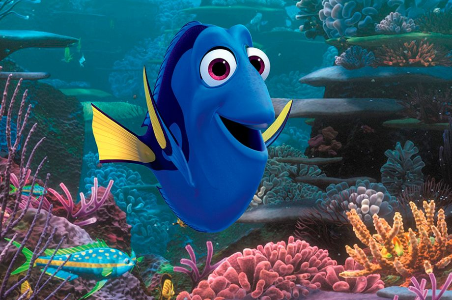 Watch Idris Elba as a sea lion in the new Finding Dory trailer - NME