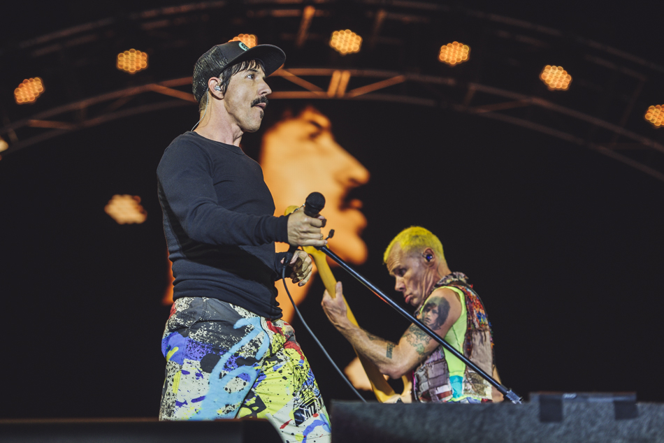 Image result for rhcp reading 2016