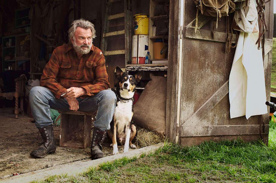 2016_HuntForTheWilderpeople_VertigoReleasing_150916-