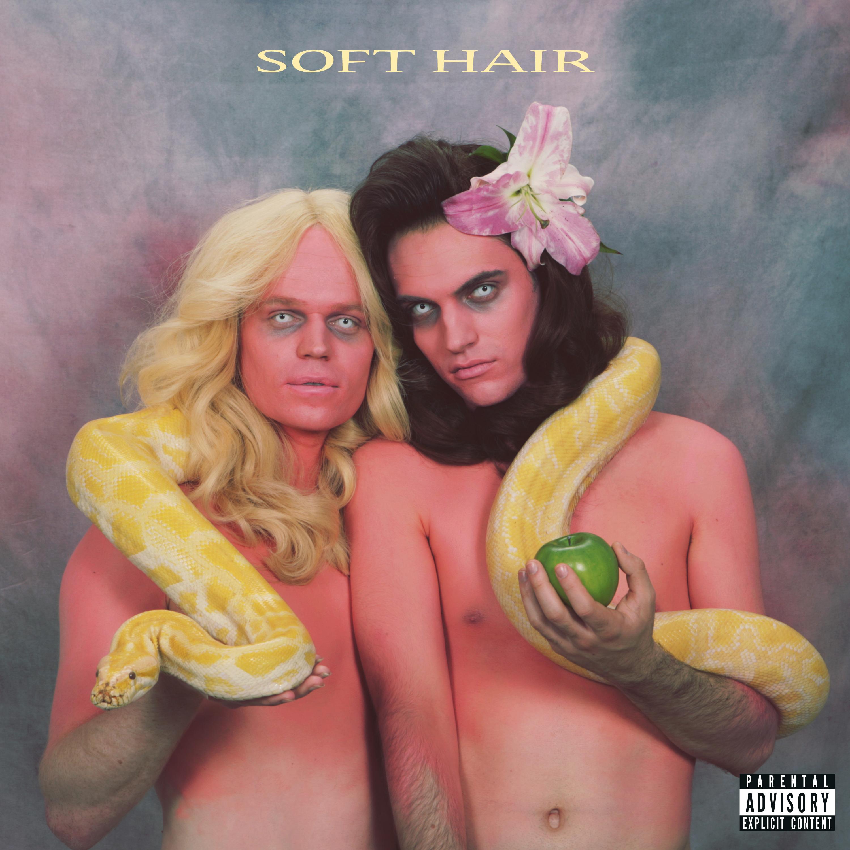 soft-hair-packshot_hi-res_24865012_141784521
