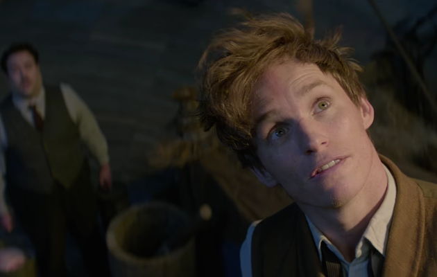 Did you spot these sneaky  Harry Potter  easter eggs in  Fantastic Beasts  And Where To Find Them   7ce4a6122b1