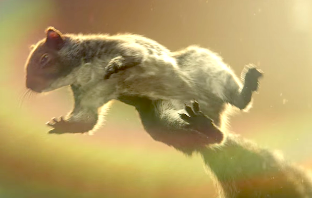John Lewis Christmas Advert 2016: a squirrel