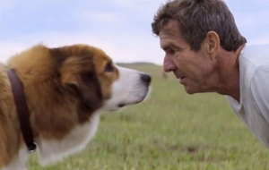 'A Dog's Purpose' film premiere has been cancelled