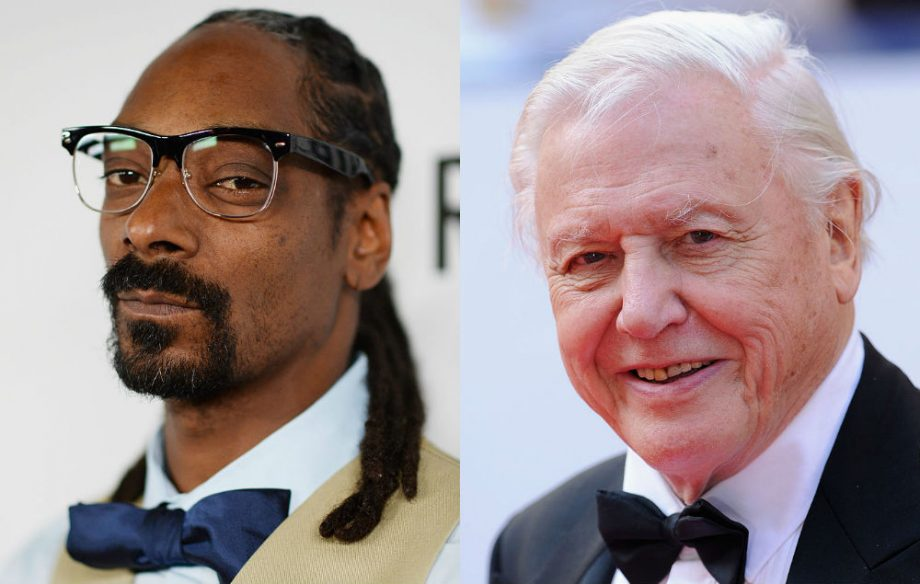 Watch Snoop Dogg narrate Planet Earth's 'Iguana Vs. Snake Chase'