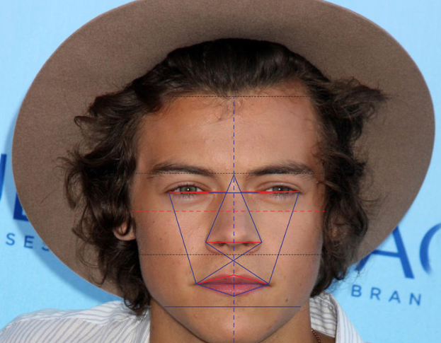 harry styles has the world s most handsome eyes and chin says