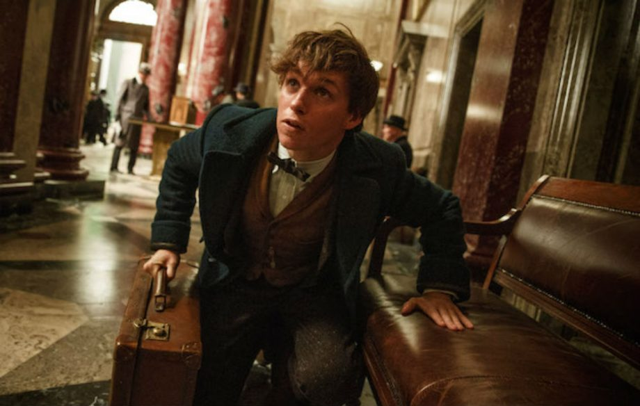 Fantastic beasts and where they come from