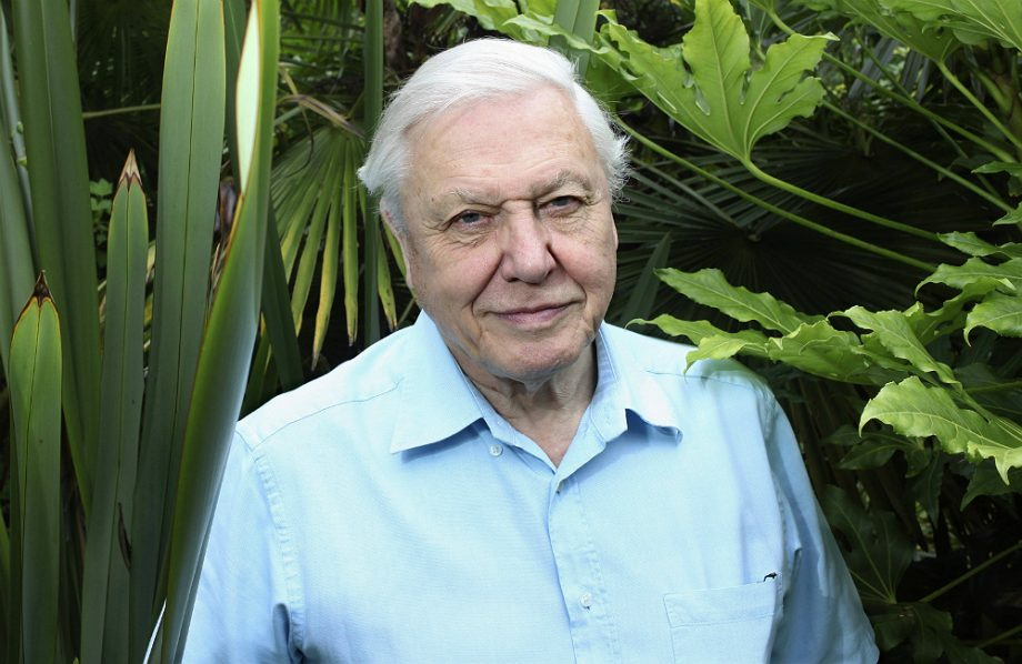 Sir David Attenborough reveals the one thing that will make him retire