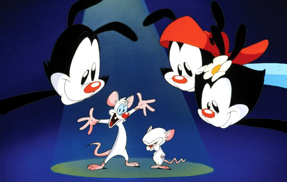 Animaniacs is coming back and these people can 39 t deal - Animaniacs pictures ...