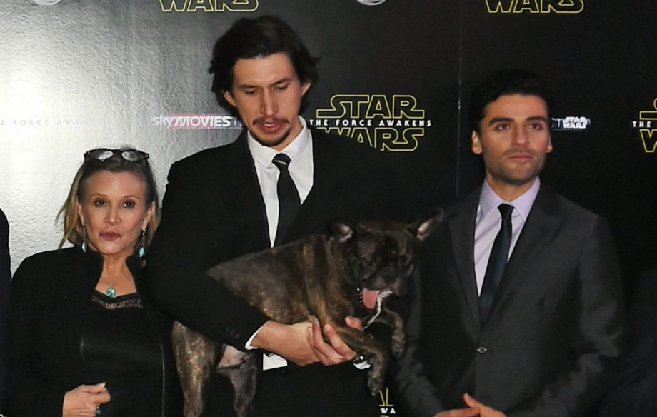 Oscar Isaac Was Slapped 24 Times By Carrie Fisher While