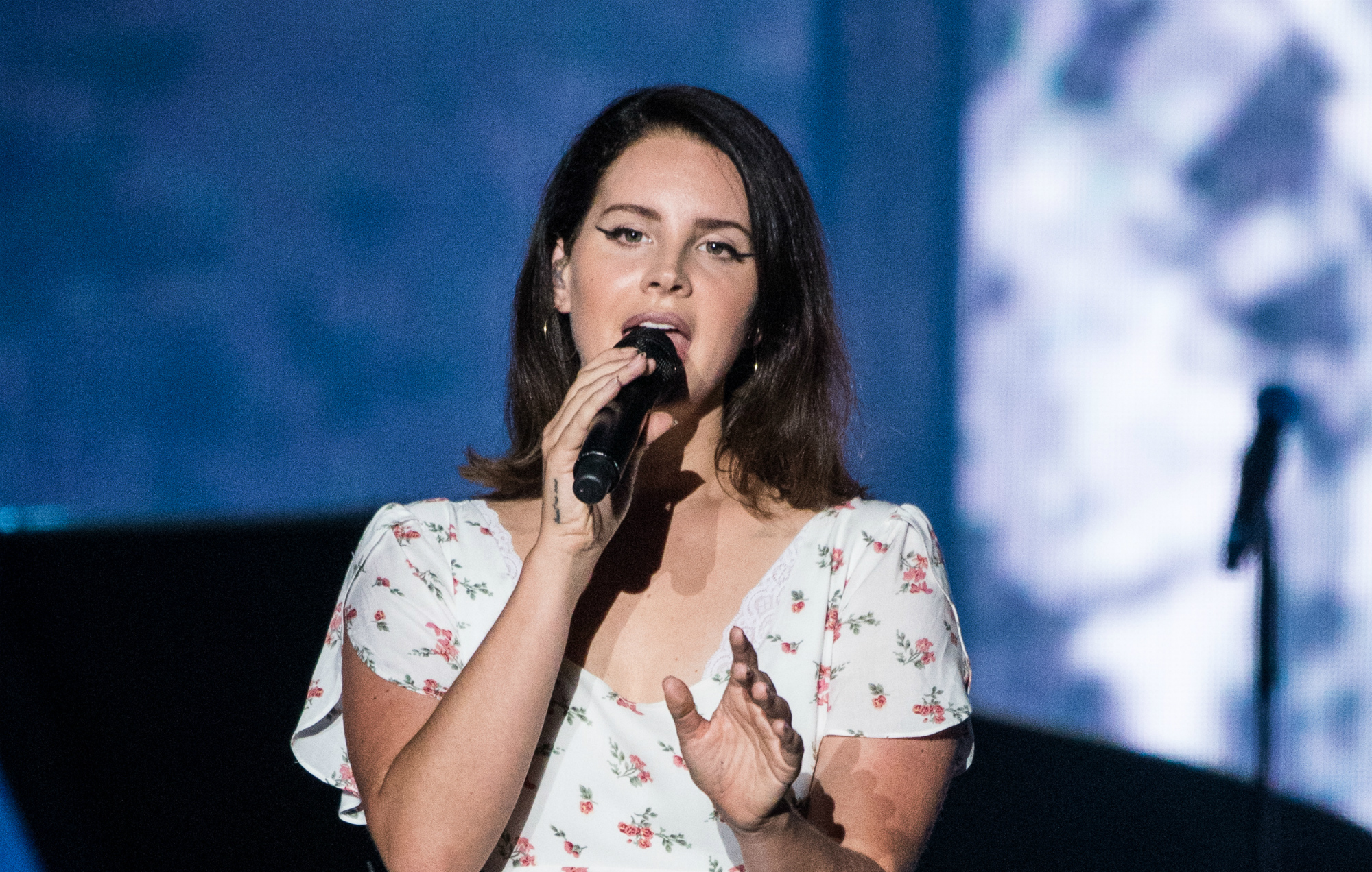 Lana Del Rey S Stalker Sentenced To One Year In Prison