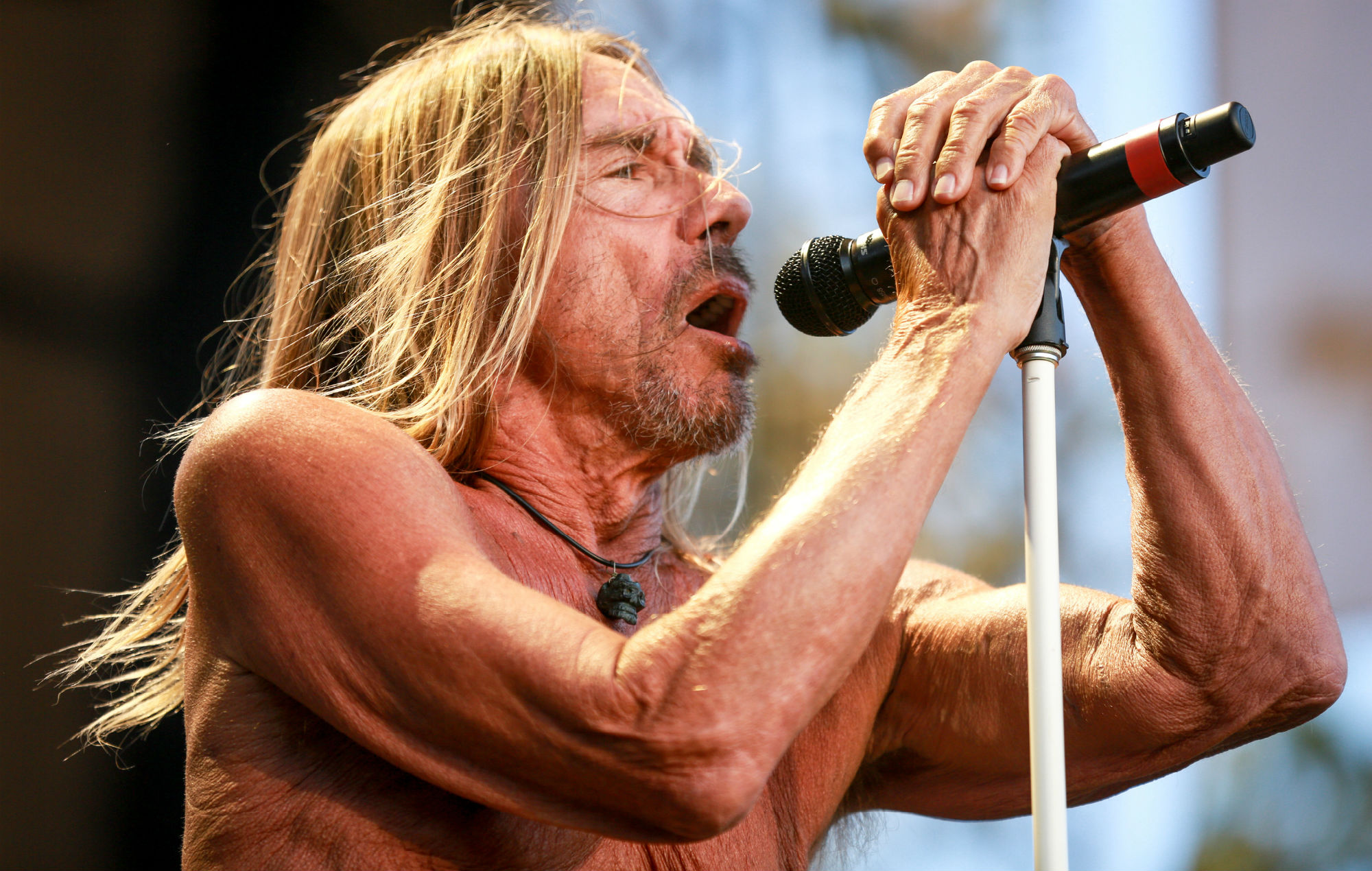 Iggy Pop To Release A New Collection Of Lyrics Photos And