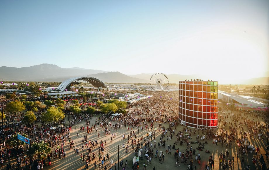 Woman who threw puppies in a bin during Coachella festival has been sent to prison