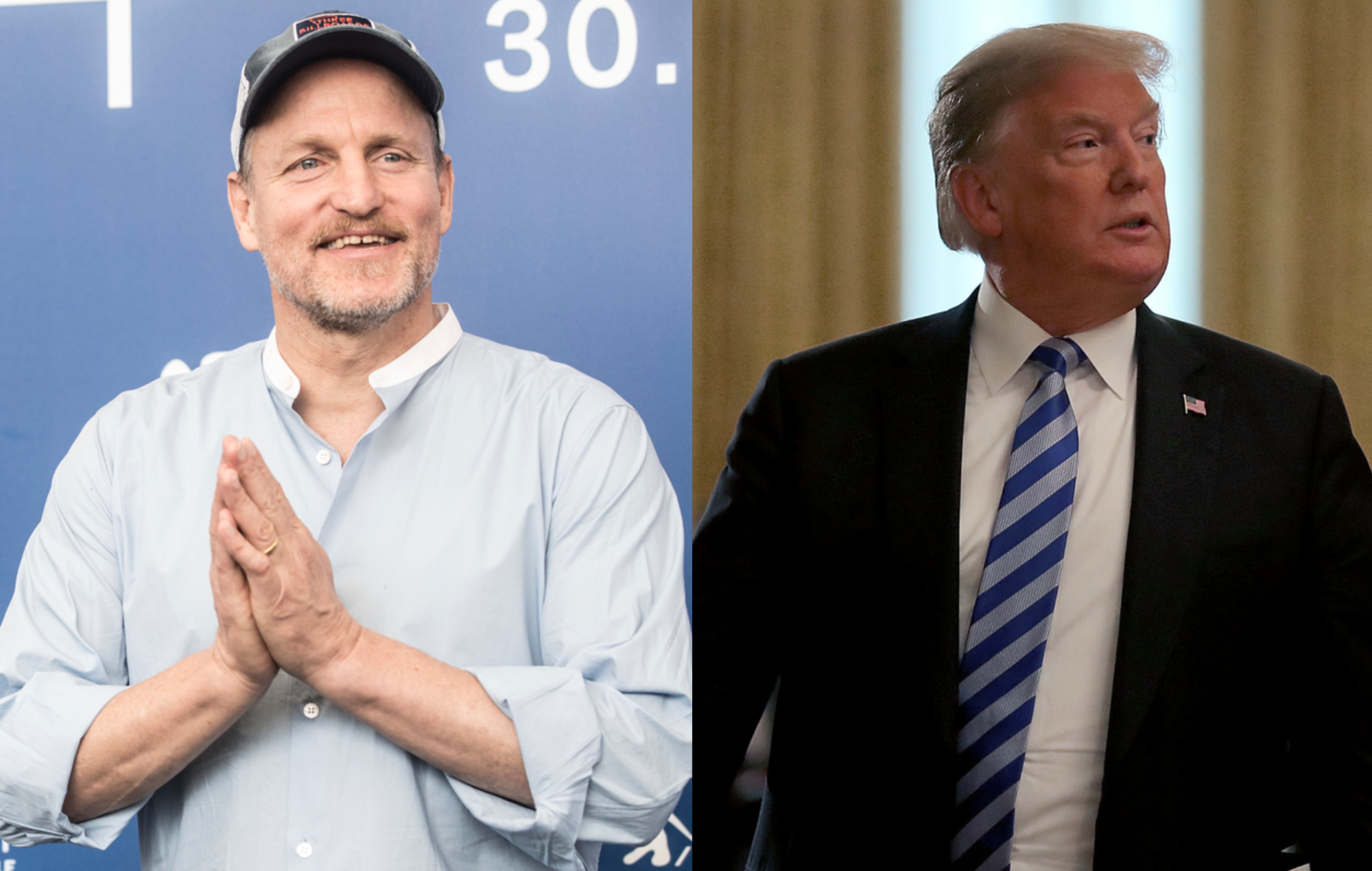Woody Harrelson once had dinner with Donald Trump and needed to smoke weed just to get through it