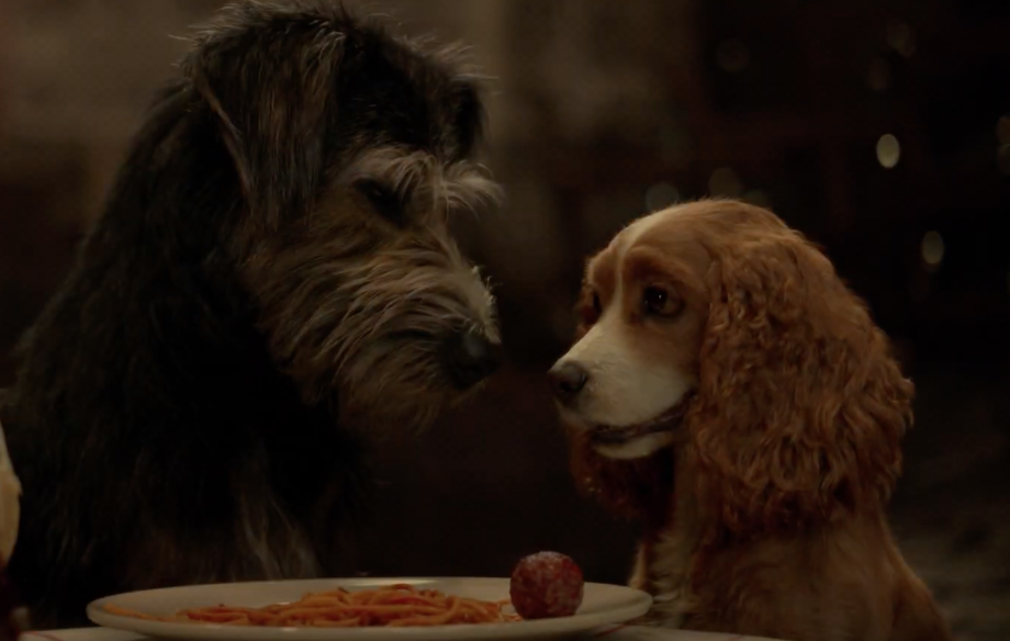 Disney unveil first trailer for 'Lady and the Tramp' live-action remake