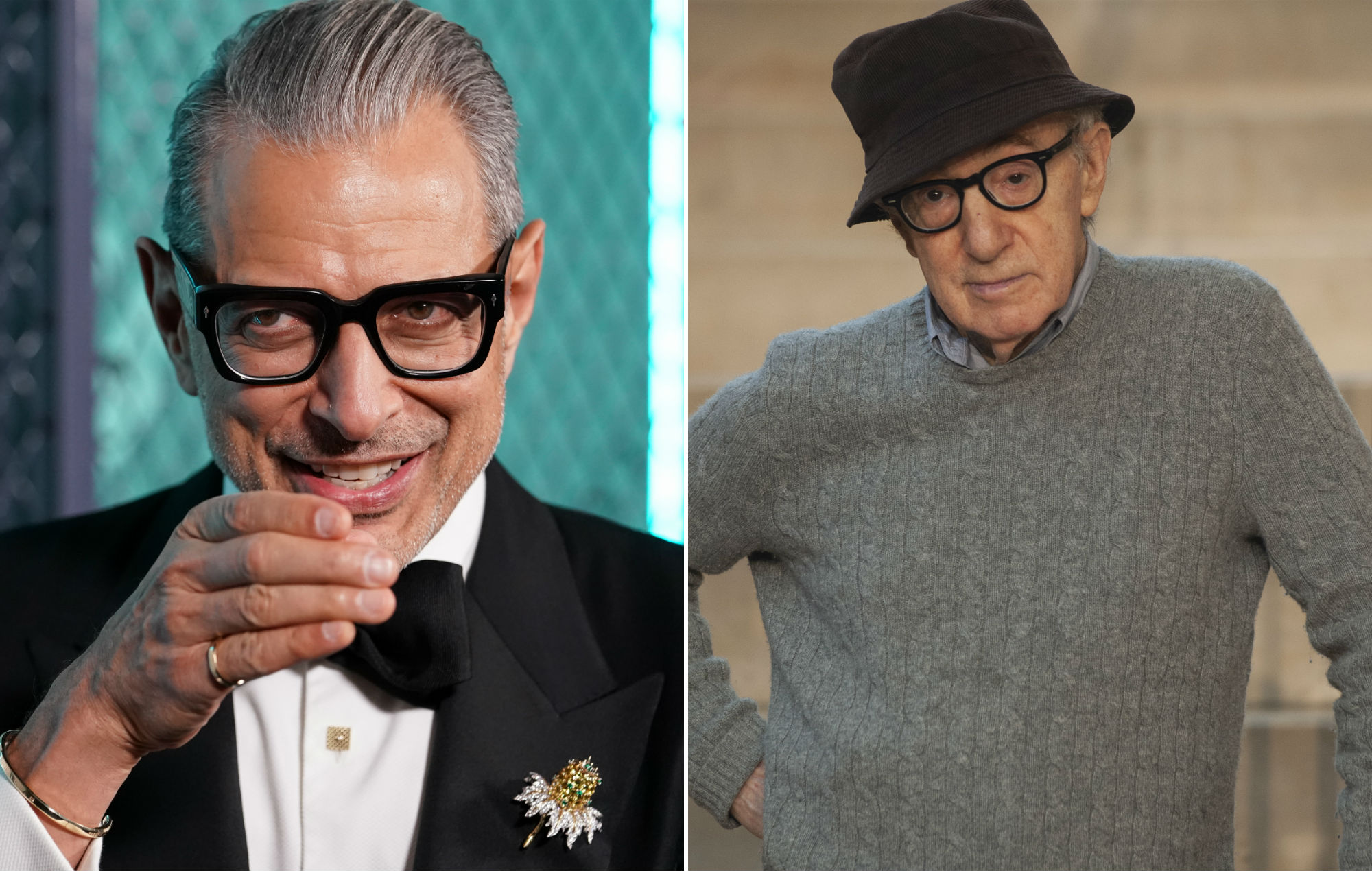 Jeff Goldblum defends Woody Allen and says he would definitely work with him again